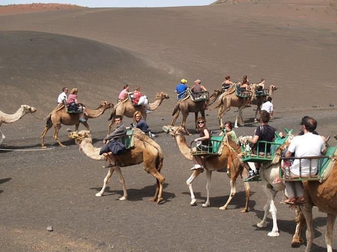 ¿Nos vamos todos a Lanzarote?  @travelsadaptado