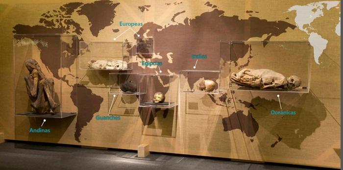 momias parque de las ciencias interior1